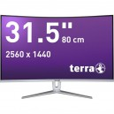 "80cm (31,5"") TERRA 3280W Curved LED DP HDMI"